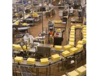 Смазочные материалы CASSIDA для пищевой промышленности (81)